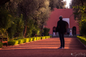 Cyril Mouty photography marrakech mamounia